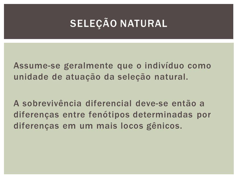 Assume-se geralmente que o indivíduo como unidade de atuação da seleção natural. A sobrevivência diferencial deve-se então a diferenças entre fenótipo