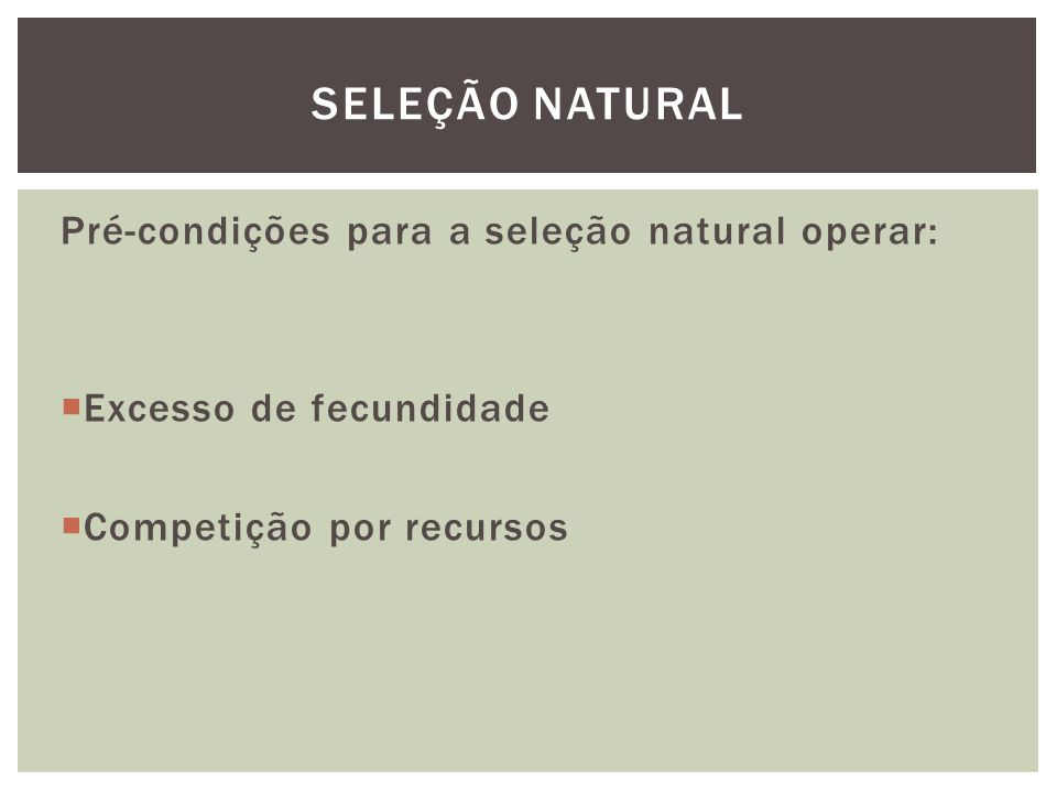 Pré-condições para a seleção natural operar: Excesso de fecundidade Competição por recursos SELEÇÃO NATURAL