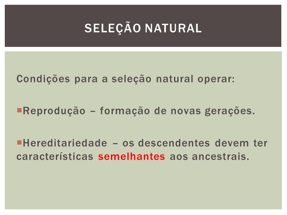 Condições para a seleção natural operar: Reprodução – formação de novas gerações. Hereditariedade – os descendentes devem ter características semelhan