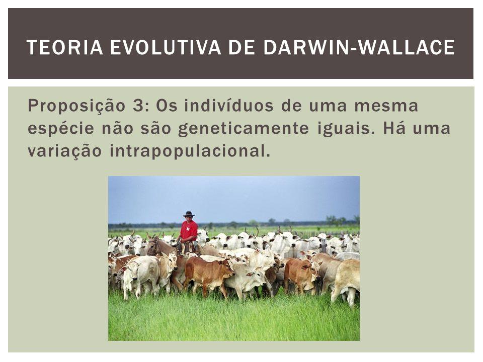 Proposição 3: Os indivíduos de uma mesma espécie não são geneticamente iguais. Há uma variação intrapopulacional. TEORIA EVOLUTIVA DE DARWIN-WALLACE