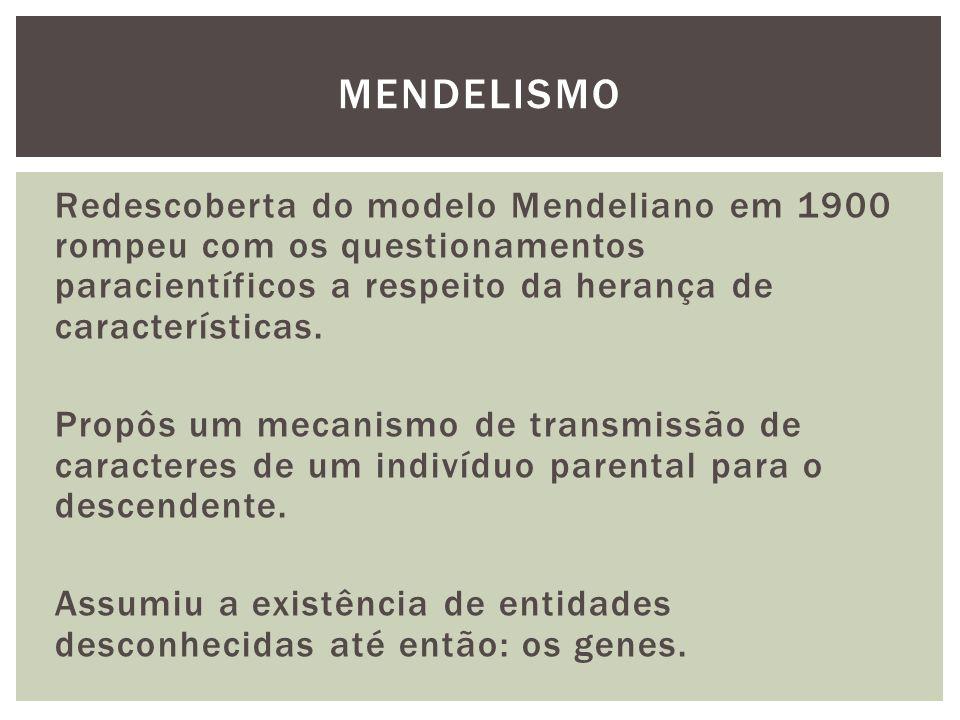 Redescoberta do modelo Mendeliano em 1900 rompeu com os questionamentos paracientíficos a respeito da herança de características. Propôs um mecanismo