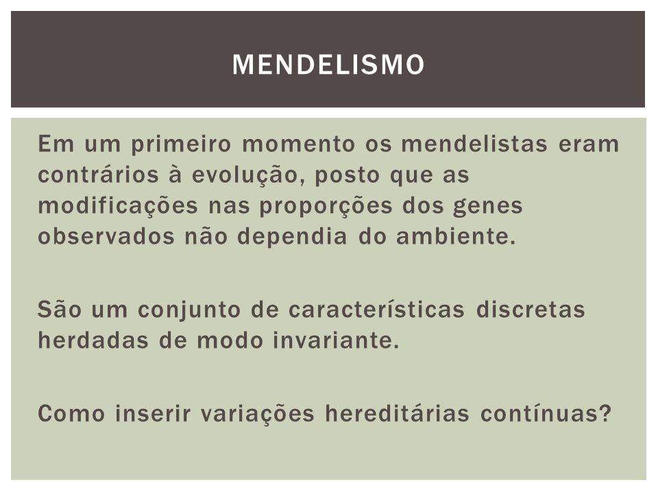 Em um primeiro momento os mendelistas eram contrários à evolução, posto que as modificações nas proporções dos genes observados não dependia do ambien