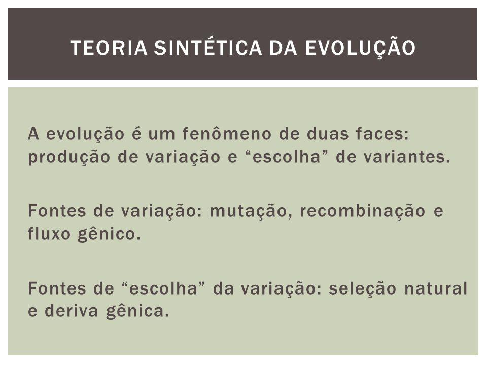 A evolução é um fenômeno de duas faces: produção de variação e escolha de variantes. Fontes de variação: mutação, recombinação e fluxo gênico. Fontes