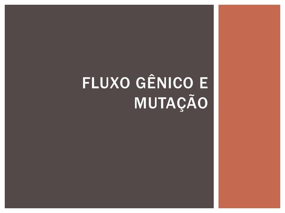 FLUXO GÊNICO E MUTAÇÃO