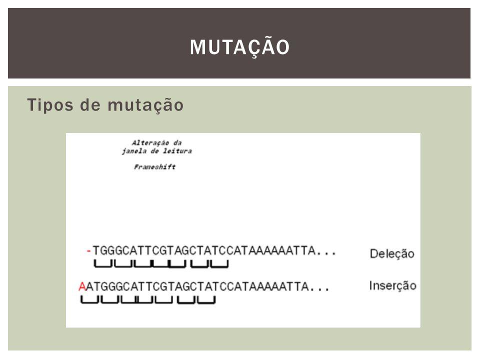 Tipos de mutação MUTAÇÃO
