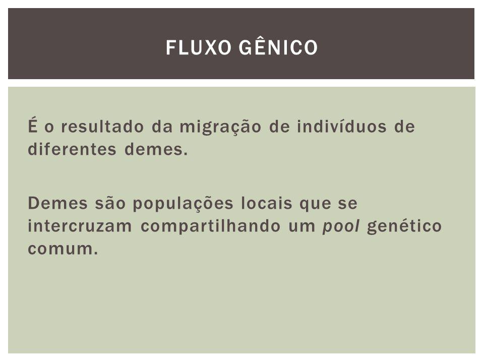 É o resultado da migração de indivíduos de diferentes demes. Demes são populações locais que se intercruzam compartilhando um pool genético comum. FLU