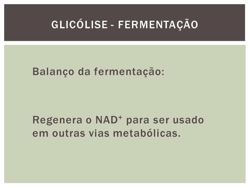 Balanço da fermentação: Regenera o NAD + para ser usado em outras vias metabólicas. GLICÓLISE - FERMENTAÇÃO