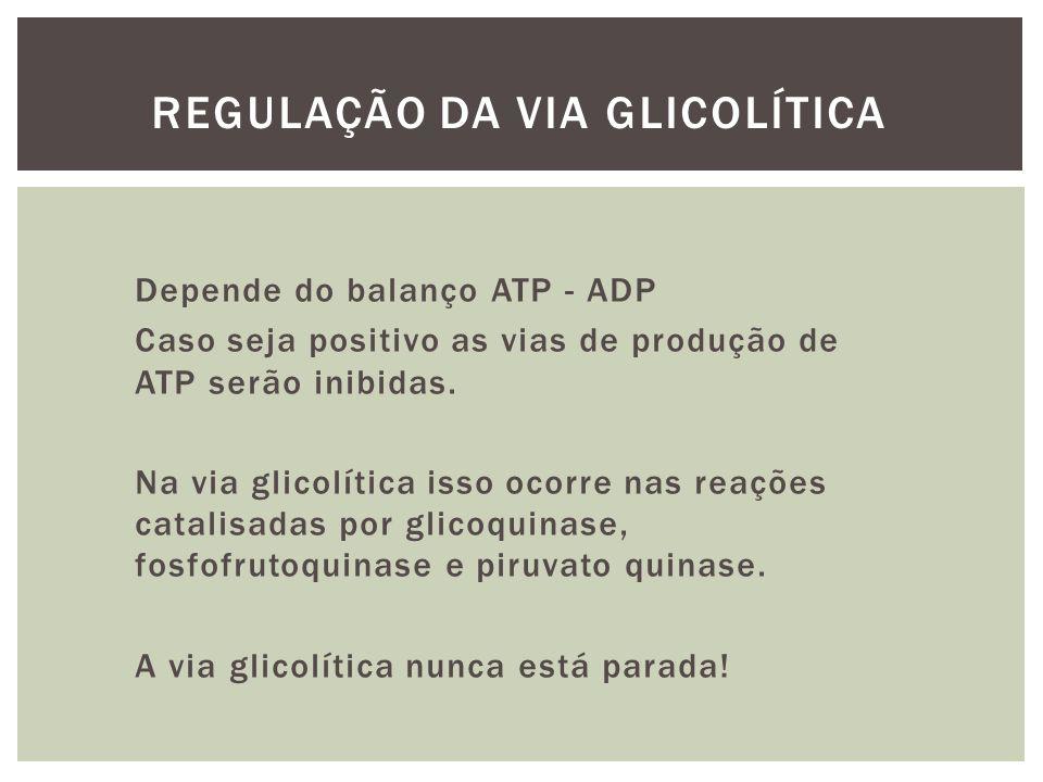 Depende do balanço ATP - ADP Caso seja positivo as vias de produção de ATP serão inibidas. Na via glicolítica isso ocorre nas reações catalisadas por