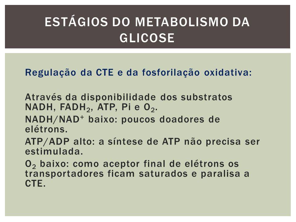 Regulação da CTE e da fosforilação oxidativa: Através da disponibilidade dos substratos NADH, FADH 2, ATP, Pi e O 2. NADH/NAD + baixo: poucos doadores