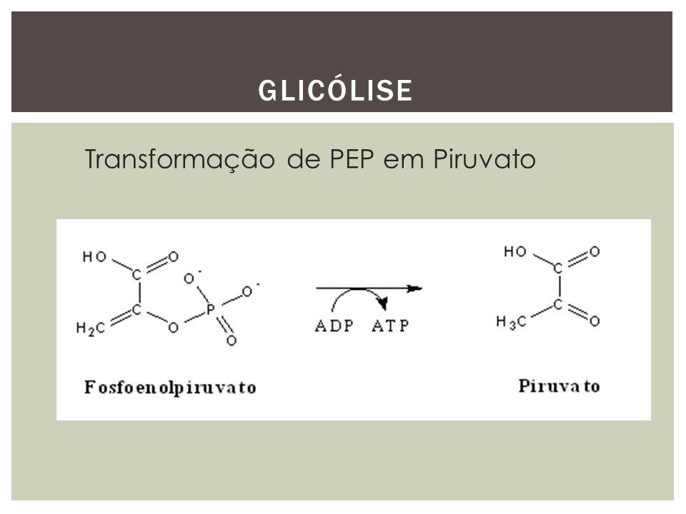GLICÓLISE Transformação de PEP em Piruvato