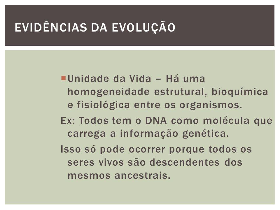 EVIDÊNCIAS DA EVOLUÇÃO Unidade da Vida – Há uma homogeneidade estrutural, bioquímica e fisiológica entre os organismos. Ex: Todos tem o DNA como moléc