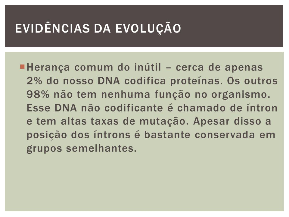 EVIDÊNCIAS DA EVOLUÇÃO Herança comum do inútil – cerca de apenas 2% do nosso DNA codifica proteínas. Os outros 98% não tem nenhuma função no organismo