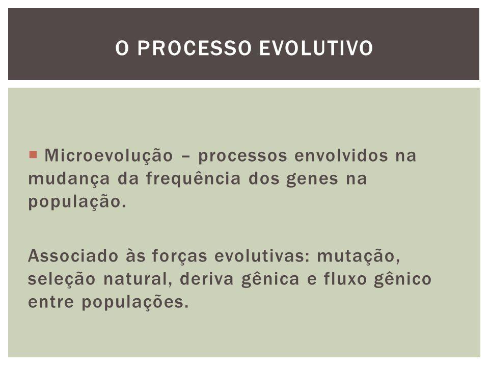 Microevolução – processos envolvidos na mudança da frequência dos genes na população. Associado às forças evolutivas: mutação, seleção natural, deriva
