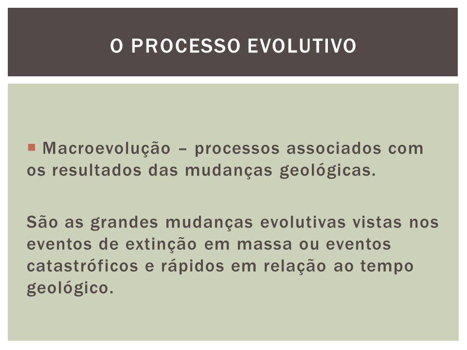 Macroevolução – processos associados com os resultados das mudanças geológicas. São as grandes mudanças evolutivas vistas nos eventos de extinção em m