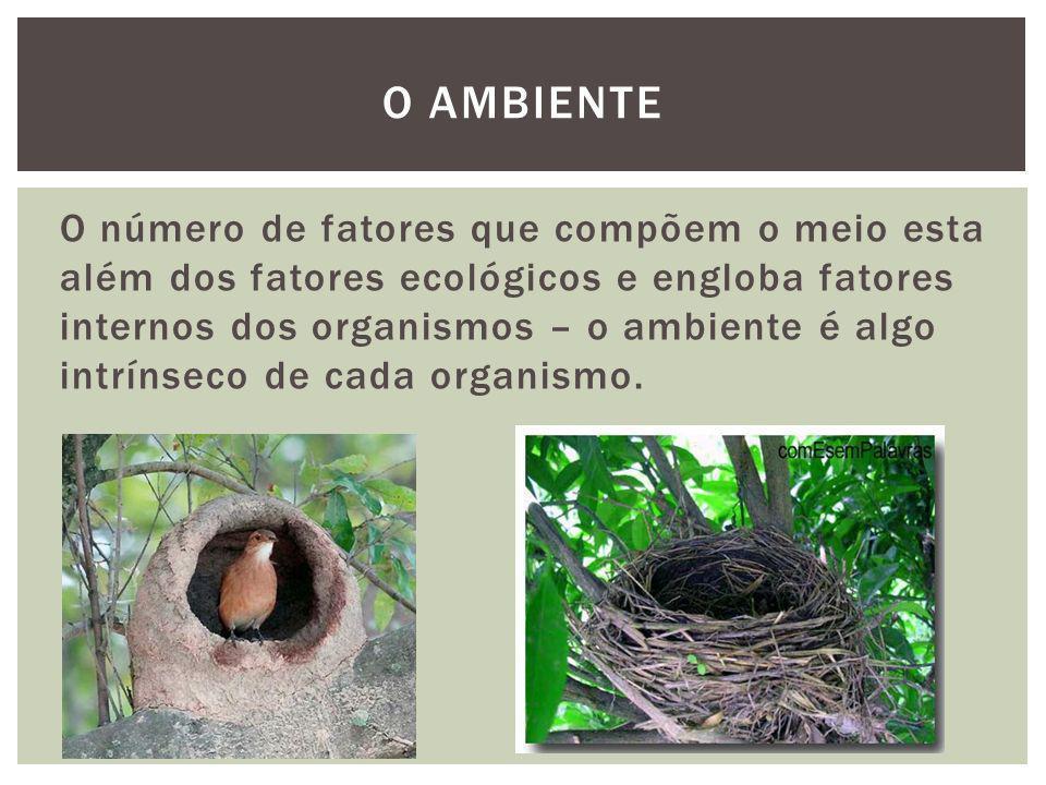 O número de fatores que compõem o meio esta além dos fatores ecológicos e engloba fatores internos dos organismos – o ambiente é algo intrínseco de ca