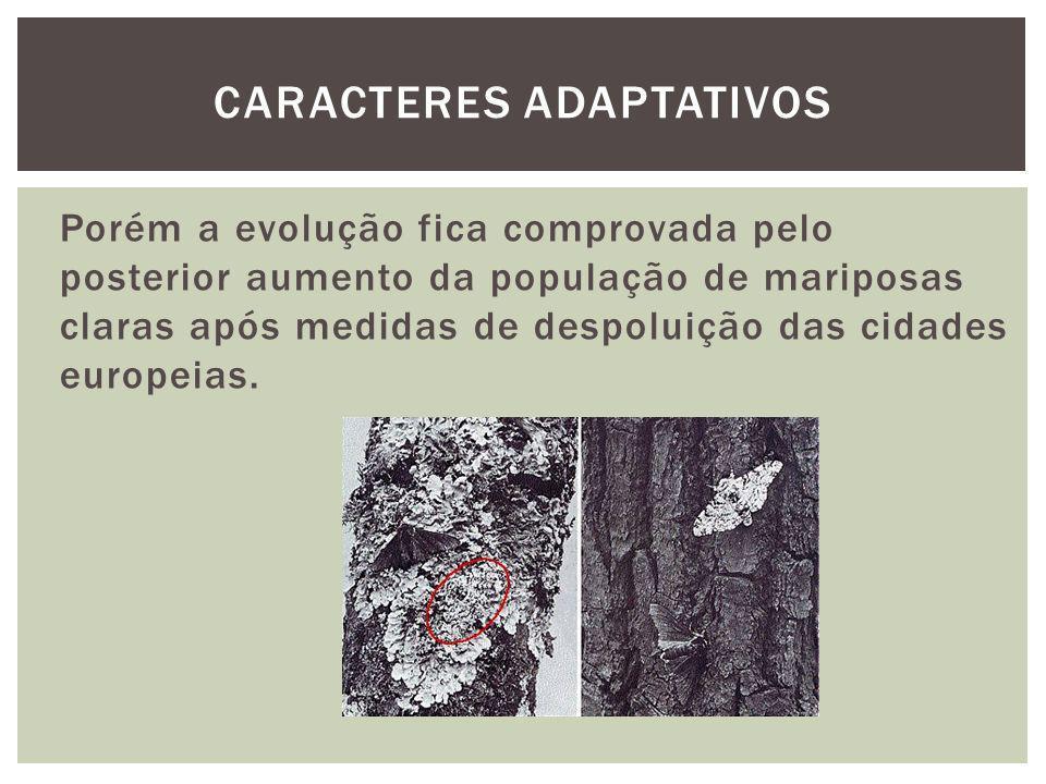 Porém a evolução fica comprovada pelo posterior aumento da população de mariposas claras após medidas de despoluição das cidades europeias. CARACTERES