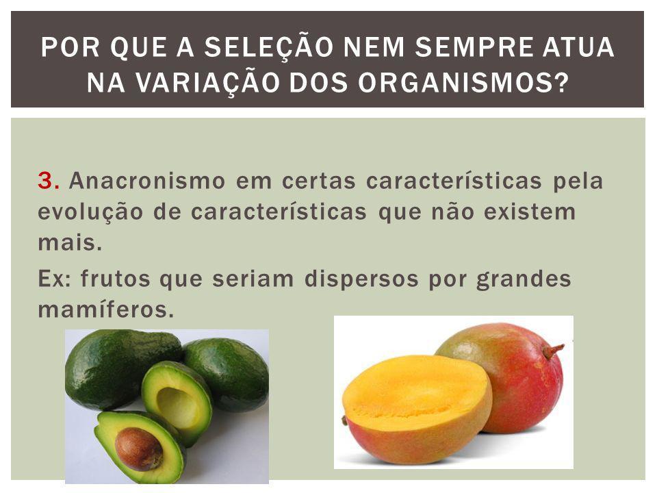 3. Anacronismo em certas características pela evolução de características que não existem mais. Ex: frutos que seriam dispersos por grandes mamíferos.
