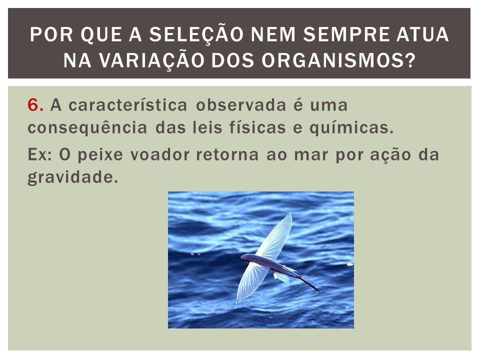 6. A característica observada é uma consequência das leis físicas e químicas. Ex: O peixe voador retorna ao mar por ação da gravidade. POR QUE A SELEÇ