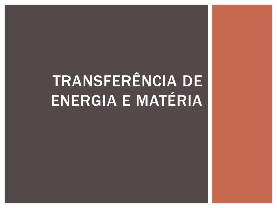 TRANSFERÊNCIA DE ENERGIA E MATÉRIA