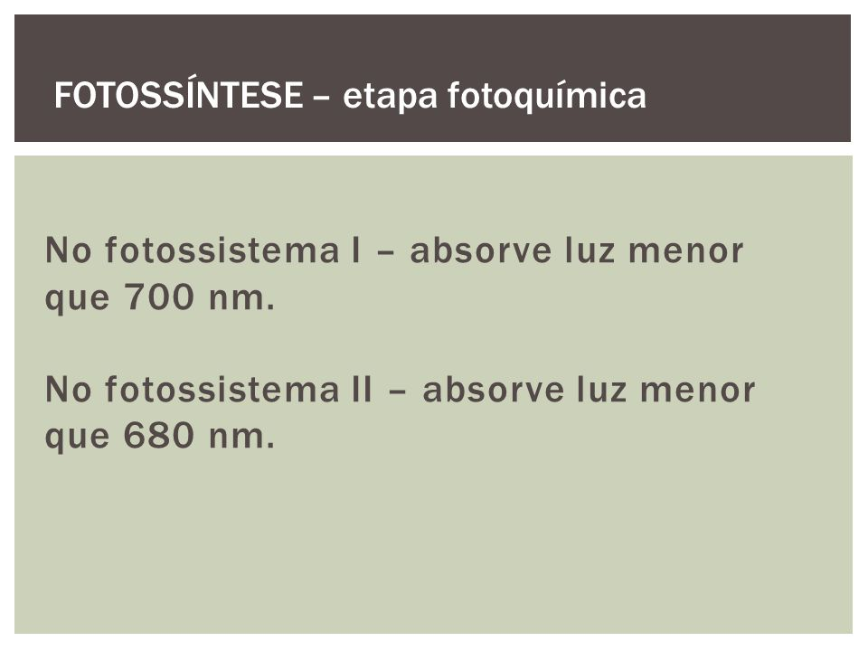 No fotossistema I – absorve luz menor que 700 nm.