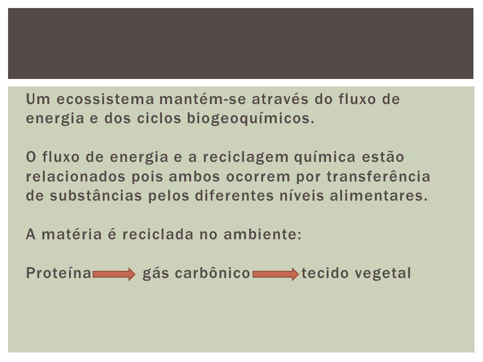A energia não se recicla no ambiente: depende de um constante influxo de energia nova externa ao sistema (ex: o sol e fontes hidrotermais).