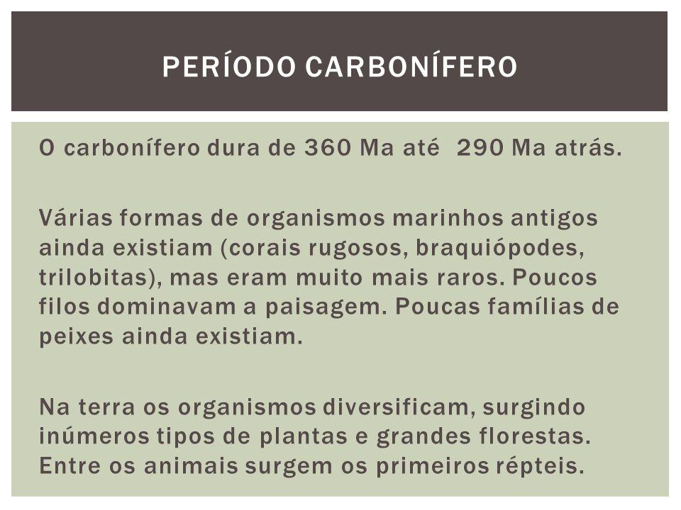 O carbonífero dura de 360 Ma até 290 Ma atrás. Várias formas de organismos marinhos antigos ainda existiam (corais rugosos, braquiópodes, trilobitas),