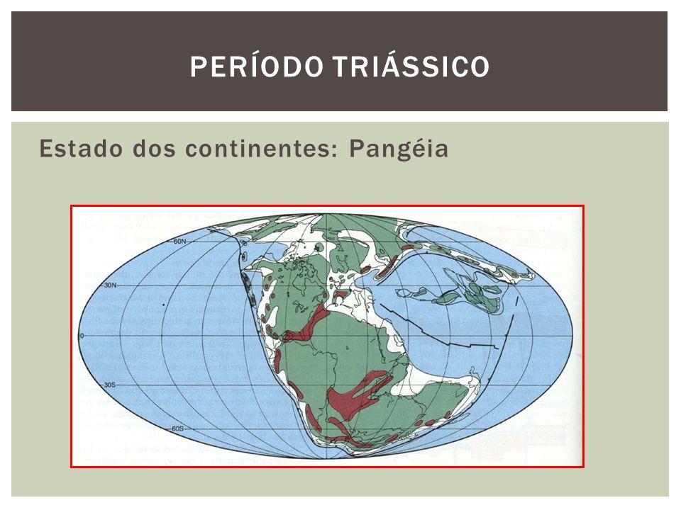 Estado dos continentes: Pangéia PERÍODO TRIÁSSICO