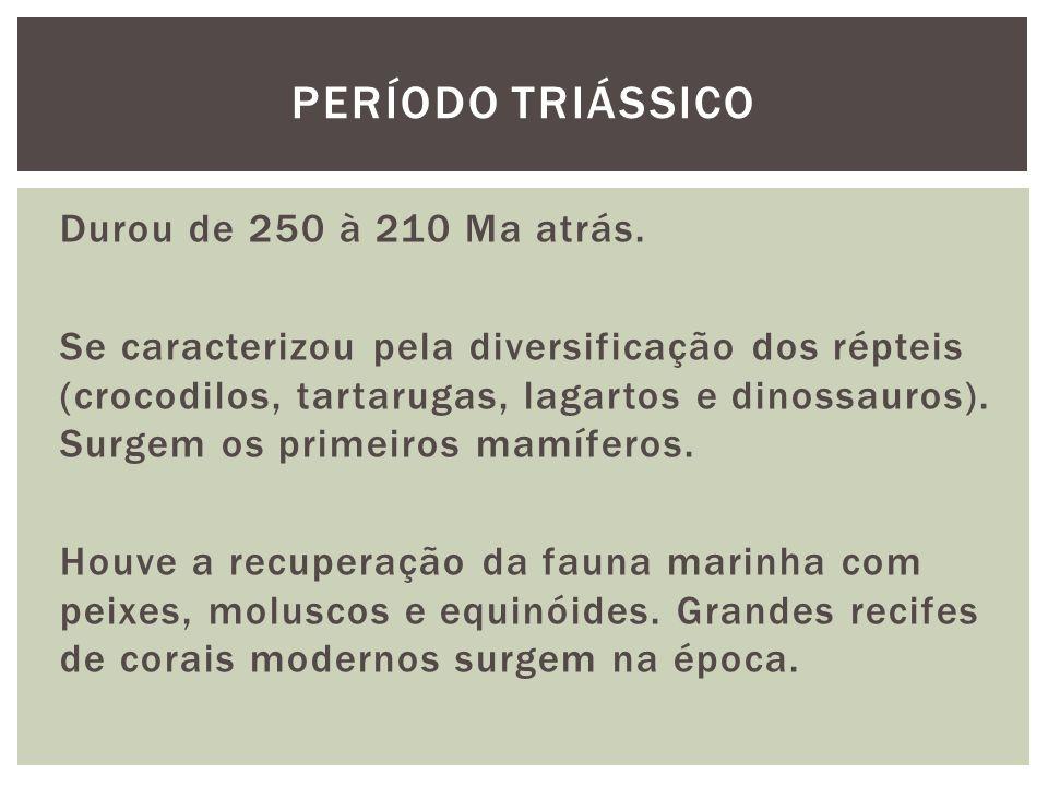 Durou de 250 à 210 Ma atrás. Se caracterizou pela diversificação dos répteis (crocodilos, tartarugas, lagartos e dinossauros). Surgem os primeiros mam