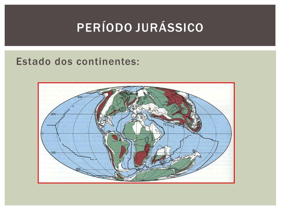Estado dos continentes: PERÍODO JURÁSSICO