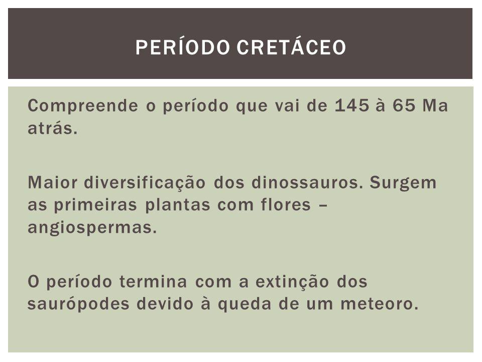 Compreende o período que vai de 145 à 65 Ma atrás. Maior diversificação dos dinossauros. Surgem as primeiras plantas com flores – angiospermas. O perí