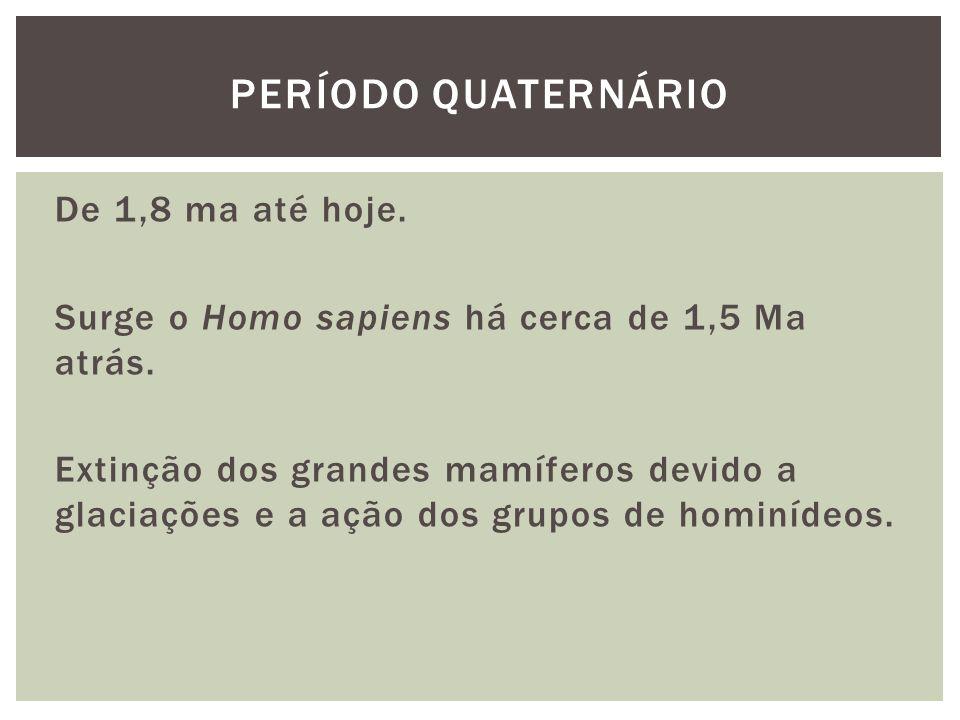 De 1,8 ma até hoje.Surge o Homo sapiens há cerca de 1,5 Ma atrás.