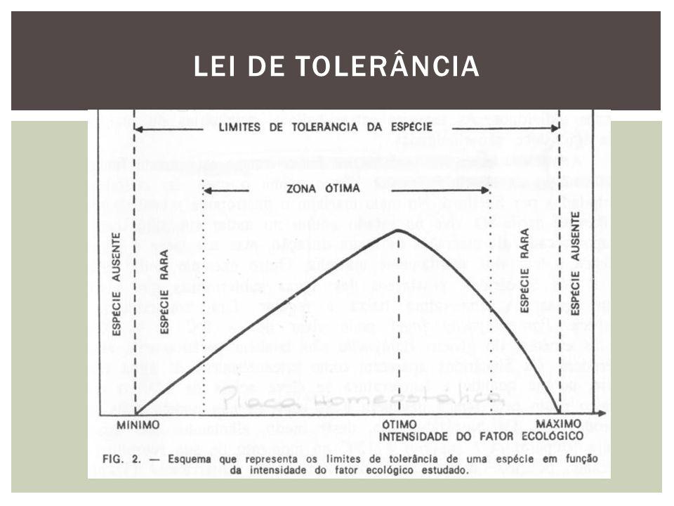 LEI DE TOLERÂNCIA