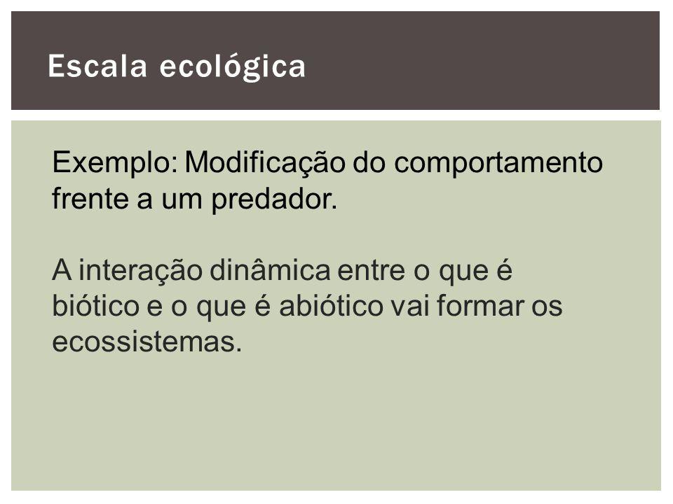 Escala ecológica Exemplo: Modificação do comportamento frente a um predador. A interação dinâmica entre o que é biótico e o que é abiótico vai formar