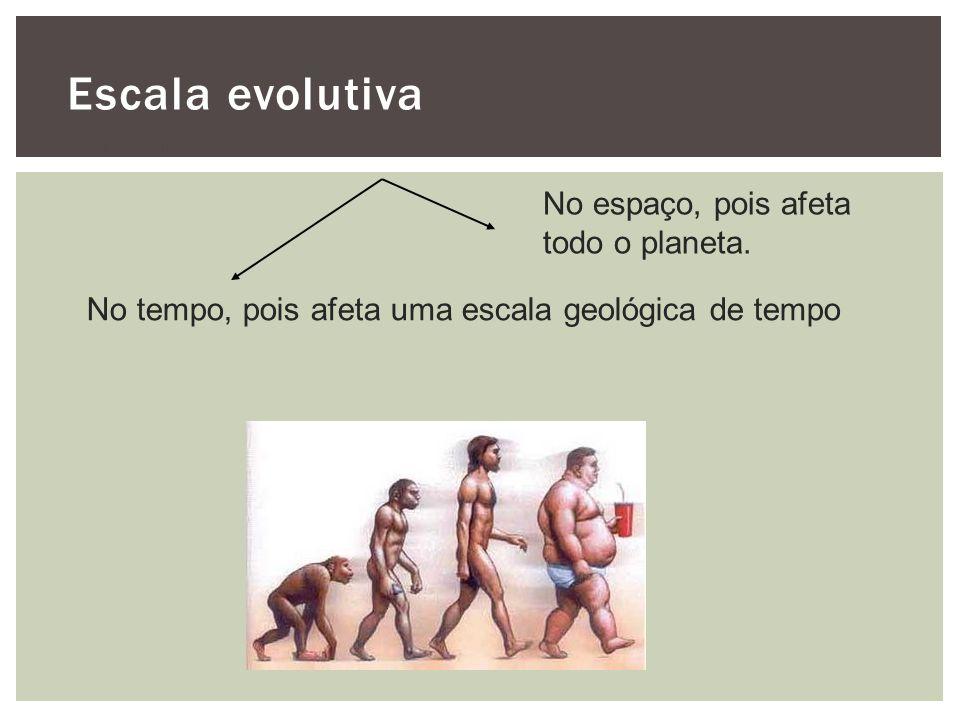 Escala evolutiva É uma macro escala No espaço, pois afeta todo o planeta. No tempo, pois afeta uma escala geológica de tempo