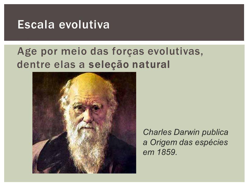 Escala evolutiva O que é a evolução? Age por meio das forças evolutivas, dentre elas a seleção natural Charles Darwin publica a Origem das espécies em