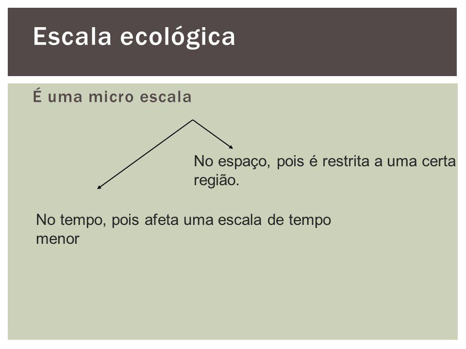 Escala ecológica É uma micro escala No espaço, pois é restrita a uma certa região. No tempo, pois afeta uma escala de tempo menor
