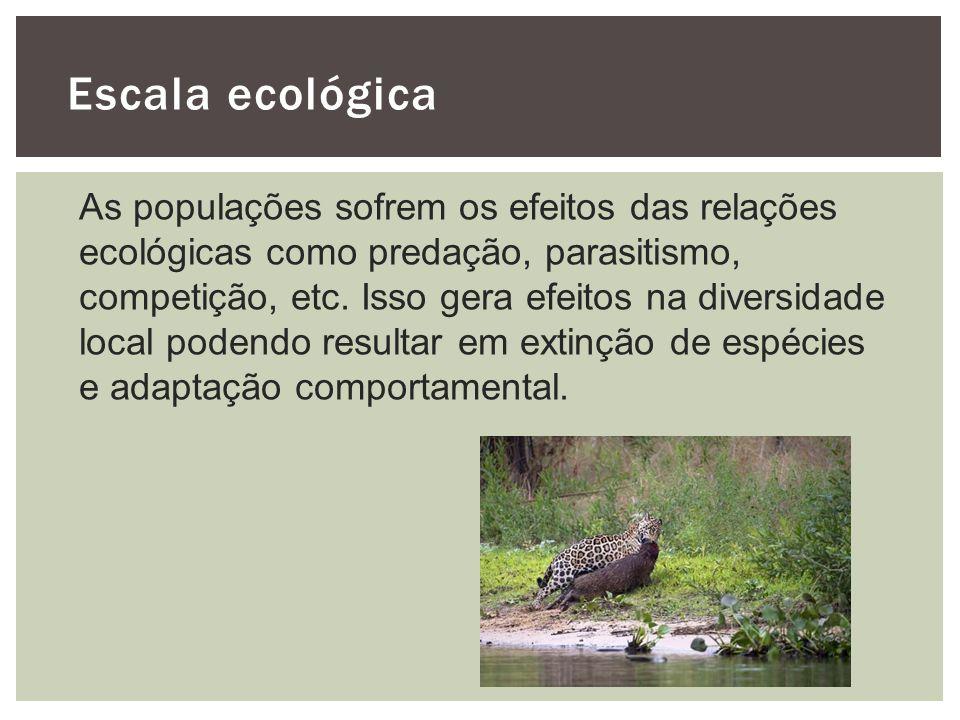 Escala ecológica As populações sofrem os efeitos das relações ecológicas como predação, parasitismo, competição, etc. Isso gera efeitos na diversidade