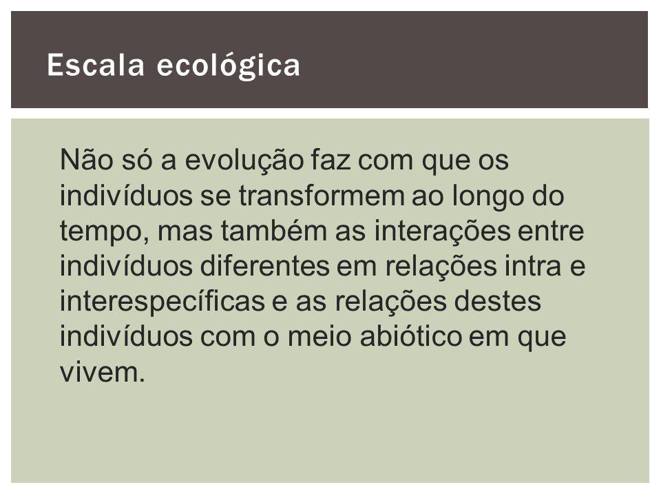 Escala ecológica Não só a evolução faz com que os indivíduos se transformem ao longo do tempo, mas também as interações entre indivíduos diferentes em