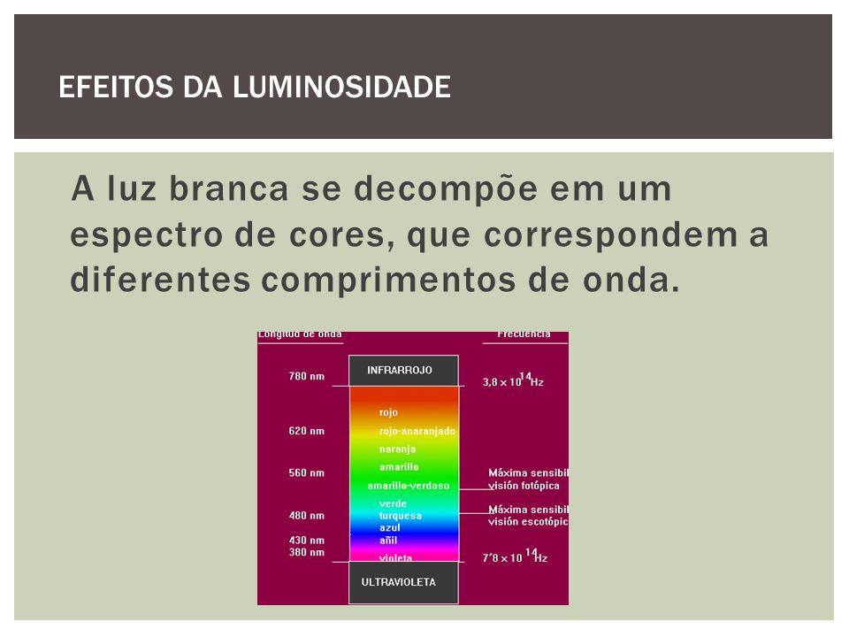 A luz branca se decompõe em um espectro de cores, que correspondem a diferentes comprimentos de onda. EFEITOS DA LUMINOSIDADE