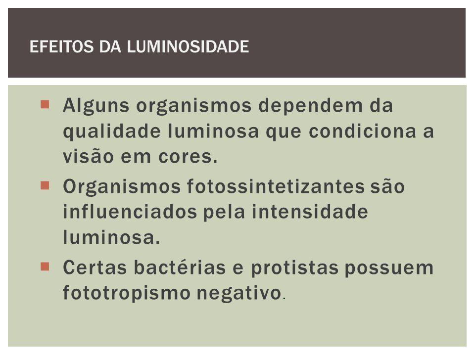 Alguns organismos dependem da qualidade luminosa que condiciona a visão em cores. Organismos fotossintetizantes são influenciados pela intensidade lum