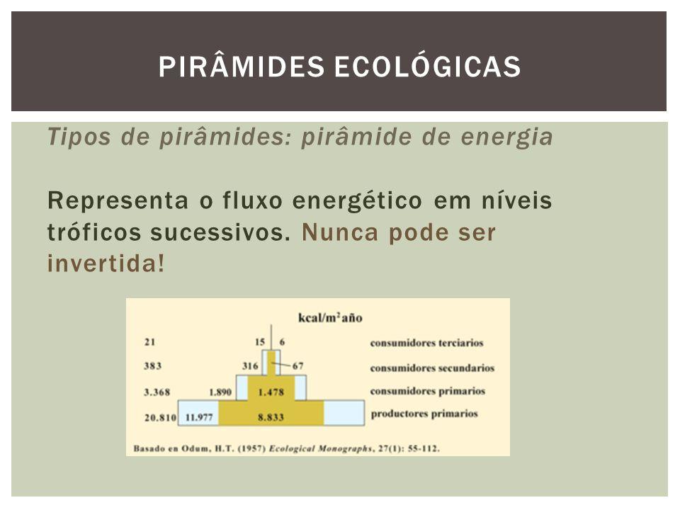 Tipos de pirâmides: pirâmide de energia Representa o fluxo energético em níveis tróficos sucessivos. Nunca pode ser invertida! PIRÂMIDES ECOLÓGICAS