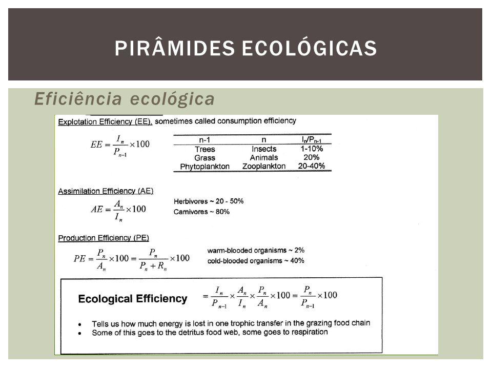 Eficiência ecológica PIRÂMIDES ECOLÓGICAS