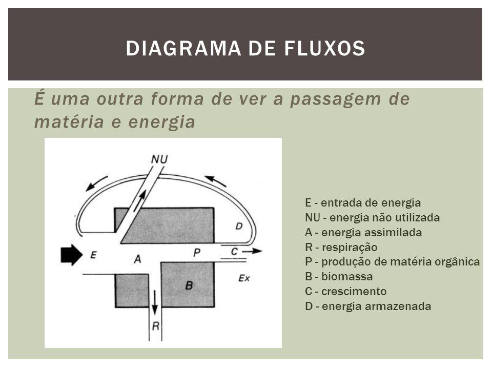 É uma outra forma de ver a passagem de matéria e energia DIAGRAMA DE FLUXOS E - entrada de energia NU - energia não utilizada A - energia assimilada R