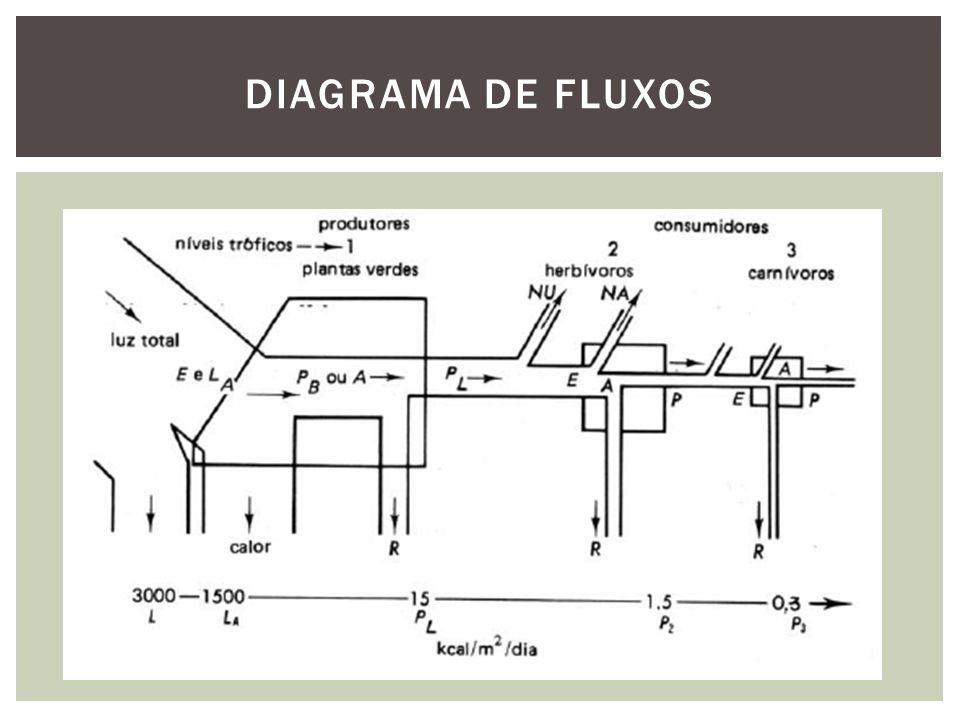 DIAGRAMA DE FLUXOS