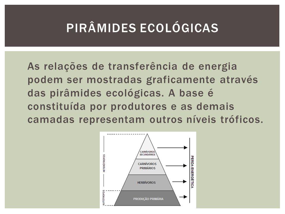 As relações de transferência de energia podem ser mostradas graficamente através das pirâmides ecológicas. A base é constituída por produtores e as de