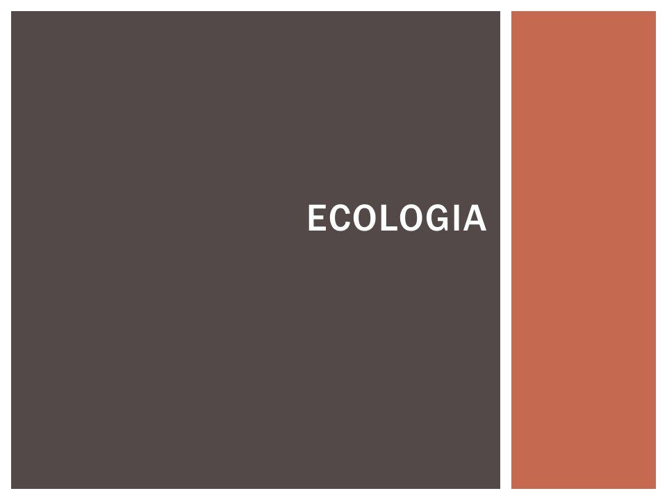 A pesquisa médica contribuiu para o desenvolvimento da ecologia, impulsionado pelas pesquisas em epidemiologia.