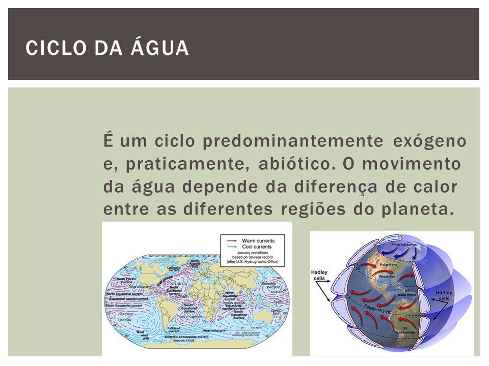 É um ciclo predominantemente exógeno e, praticamente, abiótico. O movimento da água depende da diferença de calor entre as diferentes regiões do plane