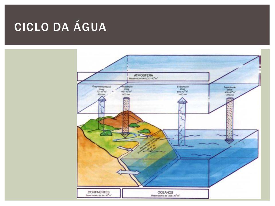 A água como commodity ou como bem essencial à vida.