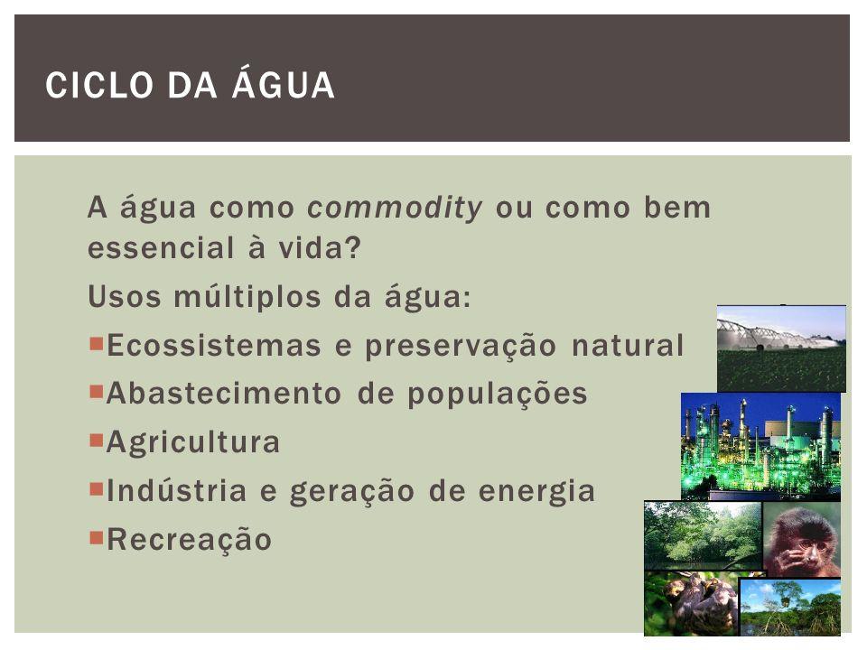 Contaminação da água Poluição por metais pesados Agrotóxicos Eutrofização – principal tipo de poluição no Brasil Assoreamento de rios CICLO DA ÁGUA