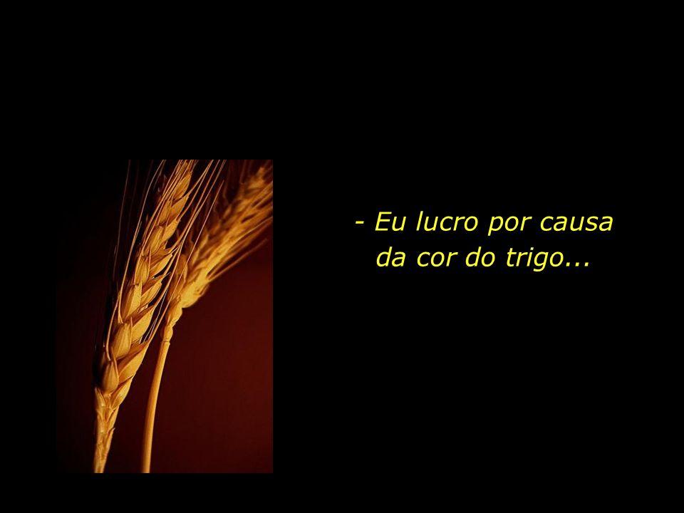 - Mas tu tens cabelos cor de ouro. O trigo, que é dourado, fará lembrar-me de ti. E eu amarei o barulho do vento no trigo...